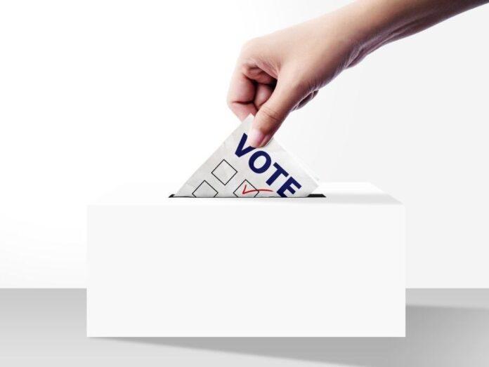 padvidar matdar election results in maharshtra