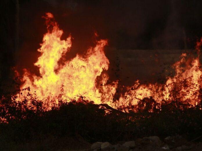 Fire erupts at Serum Institute