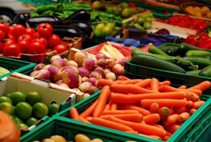 vegetarian food good for health